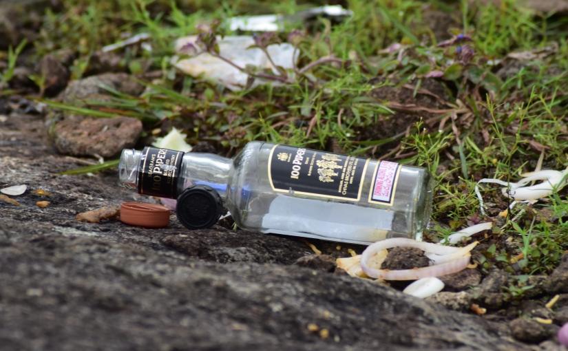 Wasteland – Die Dallapalli-Chroniken