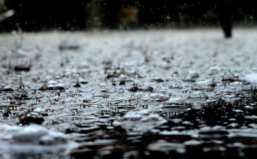 Vom ersten Regen