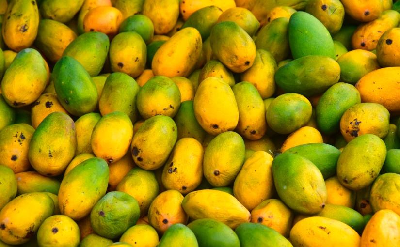 Mango Mango Mango – Indien im Ausnahmezustand!